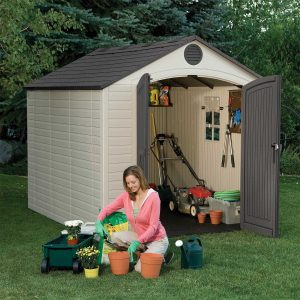 Lifetime 8 x 10 Shed